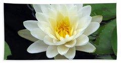 Beach Sheet featuring the photograph The Water Lilies Collection - 02 by Pamela Critchlow