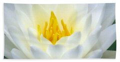 Beach Sheet featuring the photograph The Water Lilies Collection - 05 by Pamela Critchlow