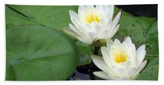 Beach Sheet featuring the photograph The Water Lilies Collection - 06 by Pamela Critchlow