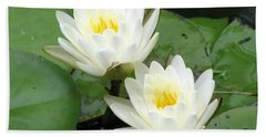 Beach Sheet featuring the photograph The Water Lilies Collection - 08 by Pamela Critchlow