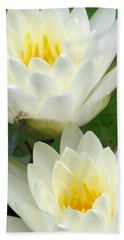 Beach Sheet featuring the photograph The Water Lilies Collection - 09 by Pamela Critchlow