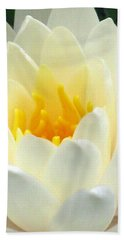 Beach Sheet featuring the photograph The Water Lilies Collection - 10 by Pamela Critchlow