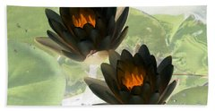 Beach Sheet featuring the photograph The Water Lilies Collection - Photopower 1041 by Pamela Critchlow