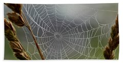 Beach Sheet featuring the photograph The Web by Kerri Farley