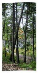 The Woods Coastal Maine Botanical Gardens Beach Towel by Patricia E Sundik