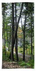 The Woods Coastal Maine Botanical Gardens Beach Sheet by Patricia E Sundik