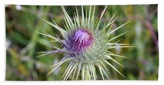 Beach Towel featuring the photograph Thistle Flower by George Atsametakis