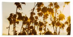 Thistles In The Sunset Beach Towel by Chevy Fleet