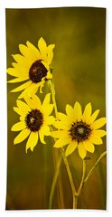 A Trio Of Black Eyed Susans Beach Towel by Gary Slawsky