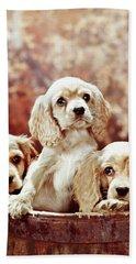 Three Blond Cocker Spaniel Puppies Beach Towel
