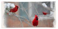 Three Cardinals In A Tree Beach Towel by Dan Friend