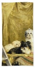 Three Dogs Beach Towel