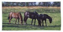 Three Horses In Field Beach Towel by Martin Davey