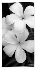Three Plumeria Flowers In Black And White Beach Towel by Sabrina L Ryan