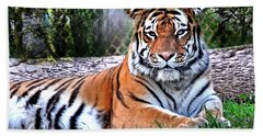 Beach Towel featuring the photograph Tiger 2 by Marty Koch