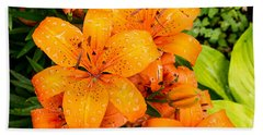 Tiger Lily After Morning Rain Beach Sheet