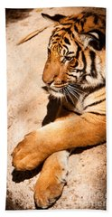Tiger Resting Beach Towel