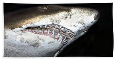 Beach Towel featuring the photograph Tiger Shark by Sergey Lukashin