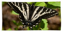 Beach Towel featuring the photograph Tiger Swallowtail Butterfly by Jeff Goulden