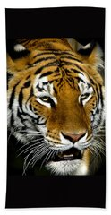 Tiger Tiger Burning Bright Beach Sheet by Venetia Featherstone-Witty