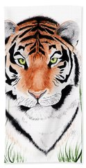 Tiger Tiger Where Beach Towel