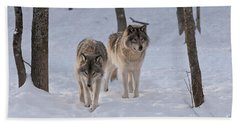 Beach Towel featuring the photograph Timber Wolf Pair  by Wolves Only