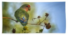 To Love A Lovebird Beach Towel