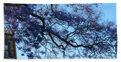 Beach Towel featuring the photograph Too Beautiful To Play With by Leanne Seymour