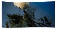 On Top Of The World Beach Towel by Karen Wiles