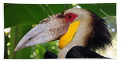 Beach Towel featuring the photograph Toucan by Sergey Lukashin