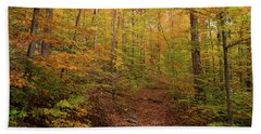 Trail In A Forest, Goodnow Mountain Beach Towel
