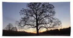 Tree At Dawn Beach Towel by Michael Porchik