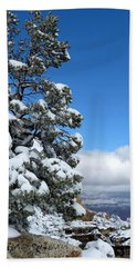 Tree At The Grand Canyon Beach Towel by Laurel Powell