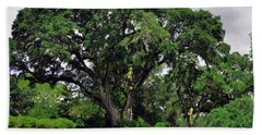 Tree By The River Beach Towel by Lydia Holly
