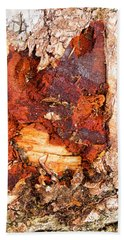 Tree Closeup - Wood Texture Beach Towel