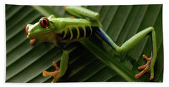 Tree Frog 16 Beach Towel by Bob Christopher
