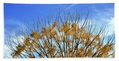 Tree In Autumn Against A Cirrus Cloud Beach Towel