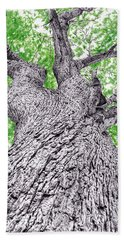 Tree Pen Drawing 4 Beach Towel