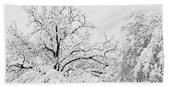 Tree Snow Beach Sheet