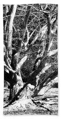 Tree Study In Black N White Beach Towel