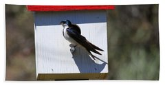 Tree Swallow Home Beach Towel by Mike  Dawson
