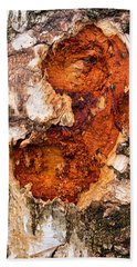 Tree Trunk Closeup - Wooden Structure Beach Towel