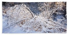 Trees In Snowy Forest After Winter Storm Beach Towel