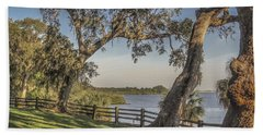 Beach Towel featuring the photograph Trees With A View by Jane Luxton