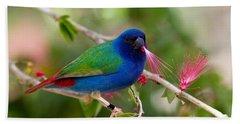 Beach Sheet featuring the photograph Tricolor Parrot Finch by Les Palenik