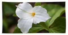 Beach Towel featuring the photograph Trillium by Todd Blanchard