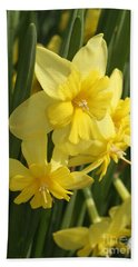 Tripartite Daffodil Beach Towel by Judy Whitton