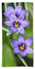 Triple Purple Beach Towel by MTBobbins Photography