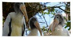 Triplet Wood Stork Nestlings Beach Towel by Richard Bryce and Family