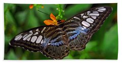 Beach Towel featuring the photograph Tropical Butterfly by Marie Hicks